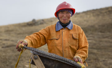 ASM Formalisation: Mongolia's five ingredients for success