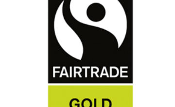Fairtrade Gold Standard Revision and Facilitated Workshop