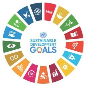Integrating the SDGs into your business: a case study with Nineteen48